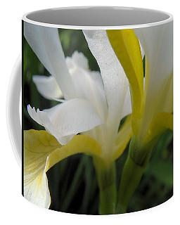 Delicate Iris Coffee Mug by Cheryl Hoyle