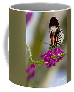 delicate Piano Key Butterfly Coffee Mug