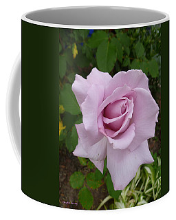 Coffee Mug featuring the photograph Delicate Purple Rose by Lingfai Leung