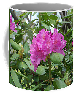 Coffee Mug featuring the photograph Delicate Beauty by Roberta Byram