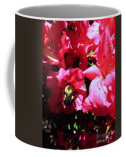 Coffee Mug featuring the photograph Delving Into Sweetness by Robyn King