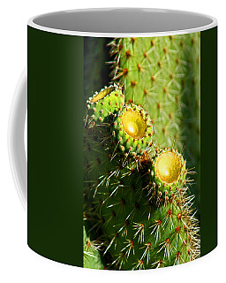 Desert Flowers Coffee Mug