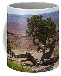 Desert Tree Coffee Mug