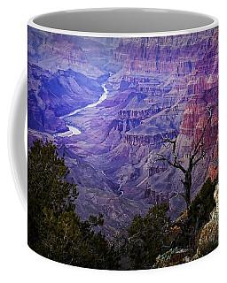 Desert View Sunset Coffee Mug
