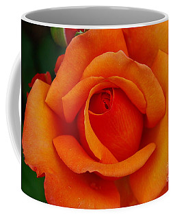 Coffee Mug featuring the photograph Detail In Orange by John S