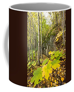 Devil's Club In Fall Coffee Mug