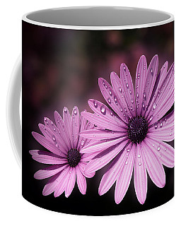 Dew Drops On Daisies Coffee Mug