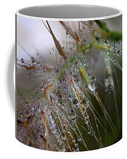 Coffee Mug featuring the photograph Dew On Fountain Grass by Joe Schofield
