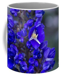 Dichorisandra Thyrsiflora - Blue Ginger Coffee Mug