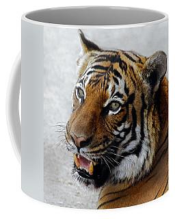 Did Someone Mention Food Coffee Mug by Elaine Malott