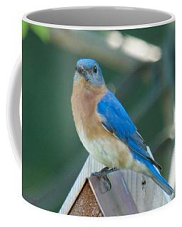 Dinner Delivery Service Coffee Mug