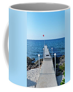 Coffee Mug featuring the photograph Divers Down by Amar Sheow