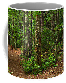 Diverted Paths Coffee Mug