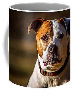 Coffee Mug featuring the photograph Dixie Doodle The Pit Bull by Eleanor Abramson