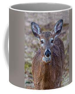 Doe Portrait Coffee Mug