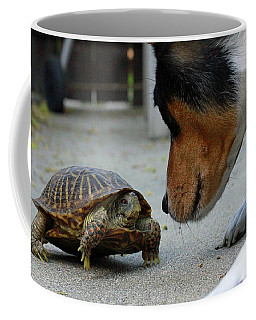Dog And Turtle Coffee Mug by Shoal Hollingsworth