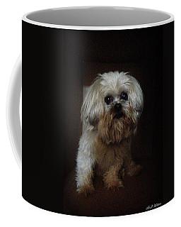 Dog In The Box Coffee Mug