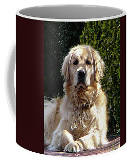 Dog On Guard Coffee Mug