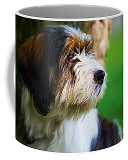 Coffee Mug featuring the photograph Dog Sitting Next To A Tree by Nick  Biemans