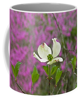 Dogwood Bloom Against A Redbud Coffee Mug