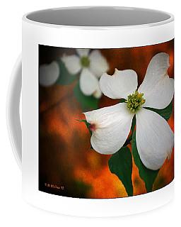 Dogwood Blossom Coffee Mug by Brian Wallace