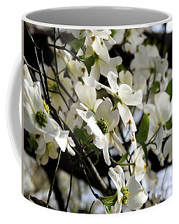 Dogwoods In The Spring Coffee Mug