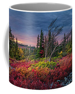 Dolly Sods Windswept Sunset Coffee Mug by Mary Almond
