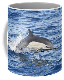 Coffee Mug featuring the pyrography Dolphin At Play by Shoal Hollingsworth