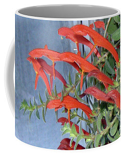 Coffee Mug featuring the photograph Dolphin Plant by Brenda Brown