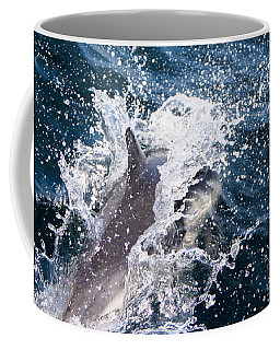 Dolphin Splash Coffee Mug
