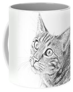 Domestic Cat Portrait Coffee Mug