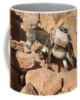 Donkey Of Mt. Sinai Coffee Mug