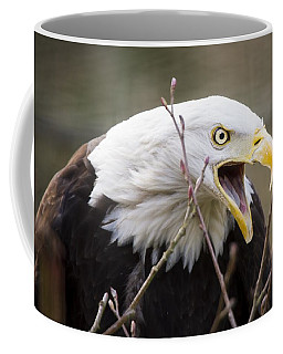 Don't Mess With This One Coffee Mug