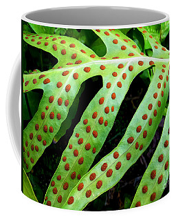 Coffee Mug featuring the photograph Dots by Kristine Merc