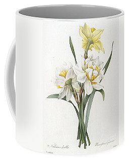 Double Daffodil Coffee Mug