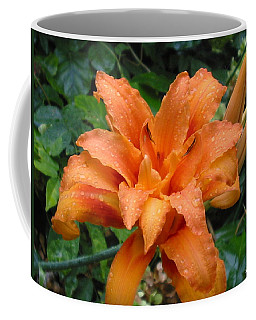 Coffee Mug featuring the photograph Double Orange Daylily by Sandra Estes