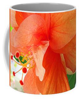 Double Peach Coffee Mug