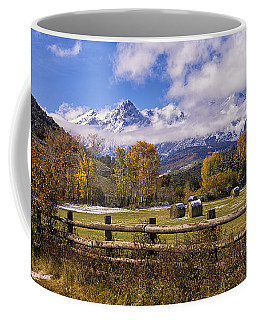 Double Rl Ranch Coffee Mug by Priscilla Burgers