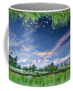 Coffee Mug featuring the photograph Downside Up by Beth Sawickie