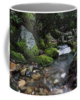 Downstream Coffee Mug