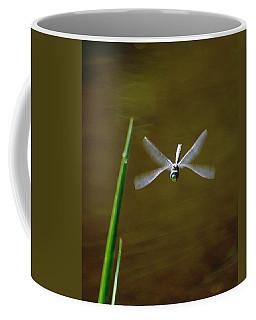 Dragonflight Coffee Mug