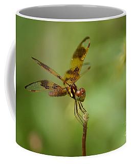 Coffee Mug featuring the photograph Dragonfly 2 by Olga Hamilton
