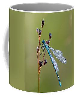Dragonfly Dew-sprinkled  Coffee Mug