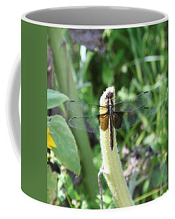 Coffee Mug featuring the photograph Dragonfly by Karen Silvestri