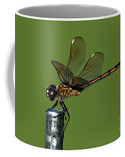 Coffee Mug featuring the photograph Dragonfly by Meg Rousher