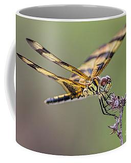 Coffee Mug featuring the photograph The Halloween Pennant Dragonfly by Olga Hamilton