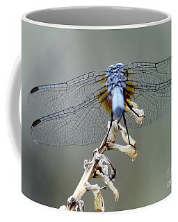 Dragonfly Wing Details II Coffee Mug