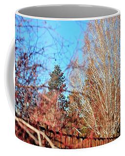 Drake Park Bridge 21655 Coffee Mug