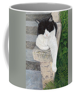 Dreaming Of Stone Lions Coffee Mug by Pat Erickson