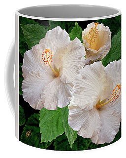 Dreamy Blooms - White Hibiscus Coffee Mug by Ben and Raisa Gertsberg